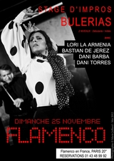 http://www.flamenco-culture.com/img/StageLori2.jpg